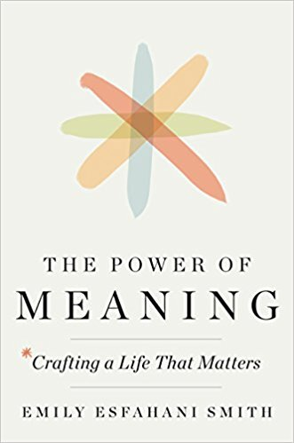 Book cover - Power of Meaning