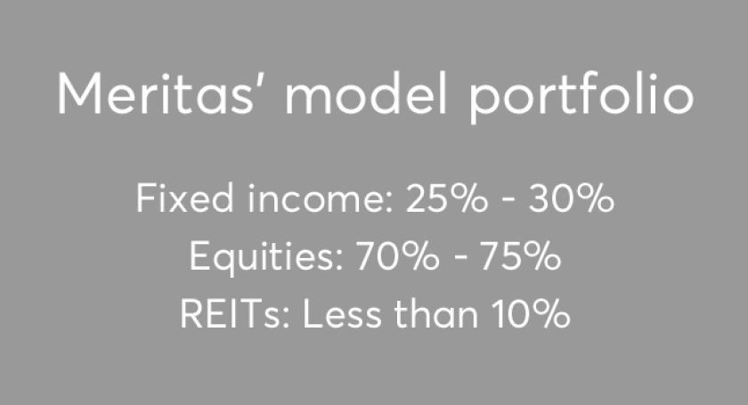 Meritas model portfolio