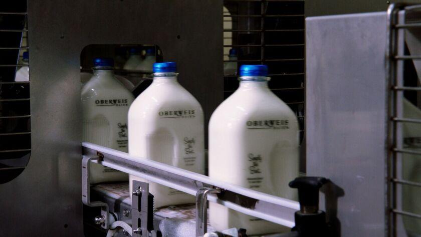 Oberweis Milk on Conveyor Belt 01.tif