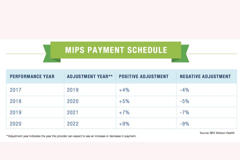 MIPS schedule-CROP.png