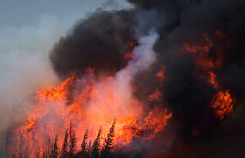 di-wildfire-stock-080519