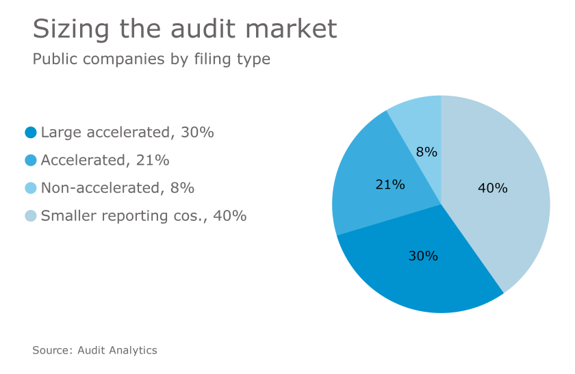 AT-041017- Audit market by filing type