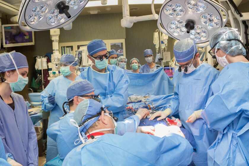 Mayo-Surgery.jpg