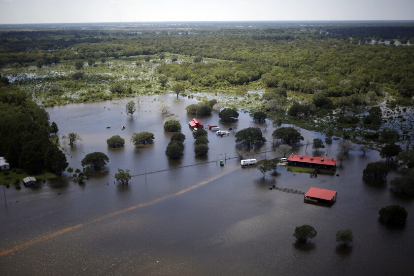 Buildings at a ranch stand immersed in floodwaters from Hurricane Harvey in this aerial photograph taken above West Columbia, Texas.