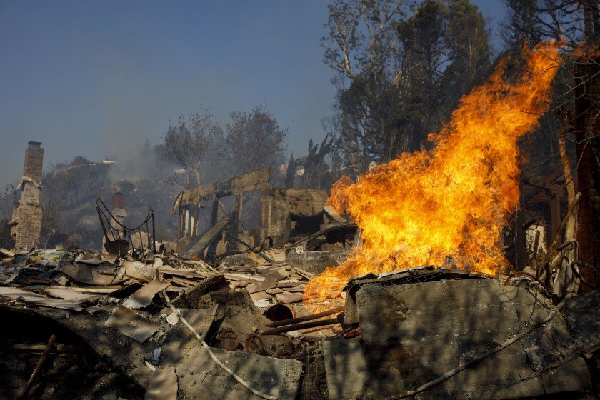 Wildfire.Bloomberg.jpg
