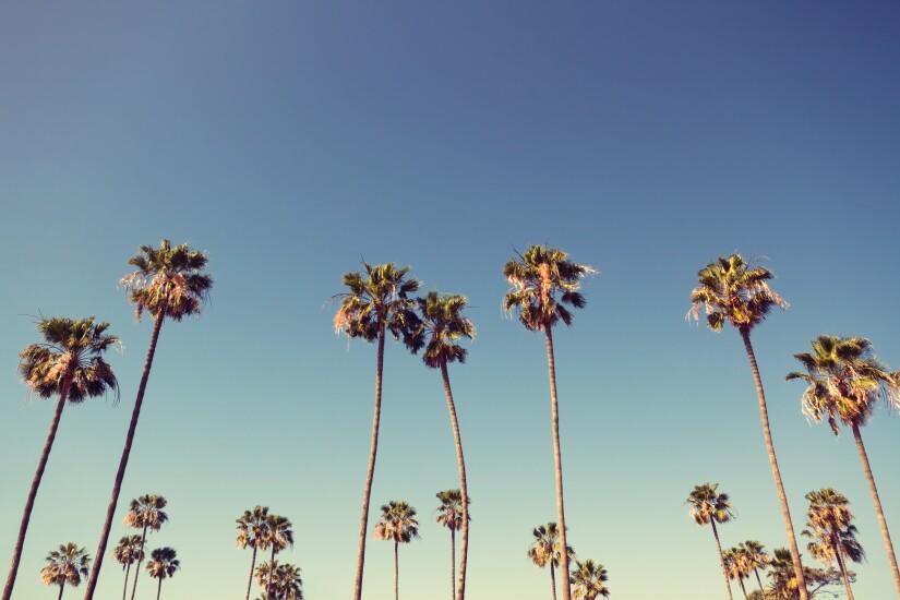 California-1-080818