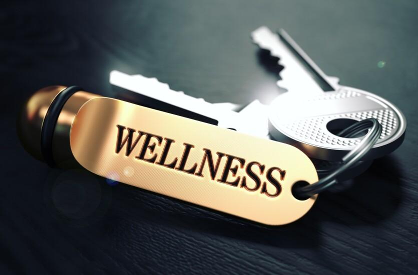 4. Wellness.jpg