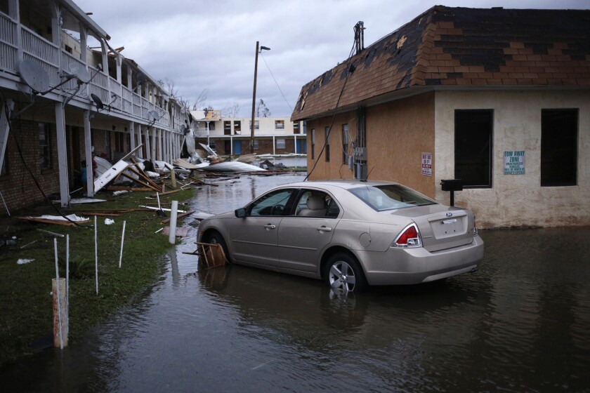 hurricane michael IAG