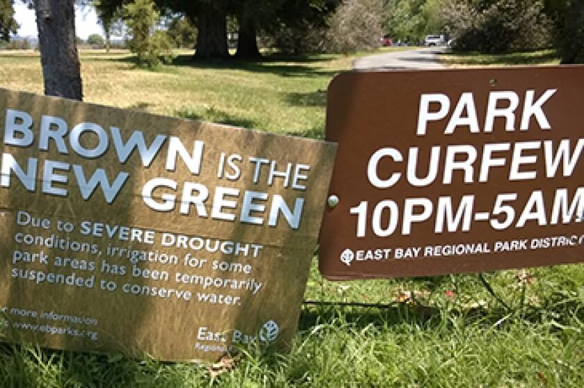 drought-photo.jpg