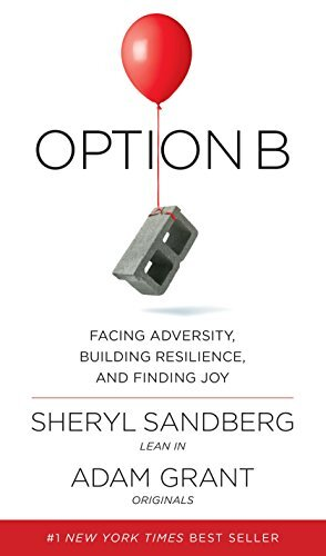 Book cover - Option B