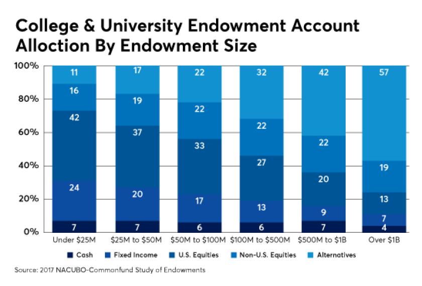 College university endowment allocation IAG Kitces