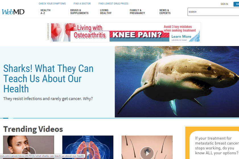 WebMD-homepage-CROP.png