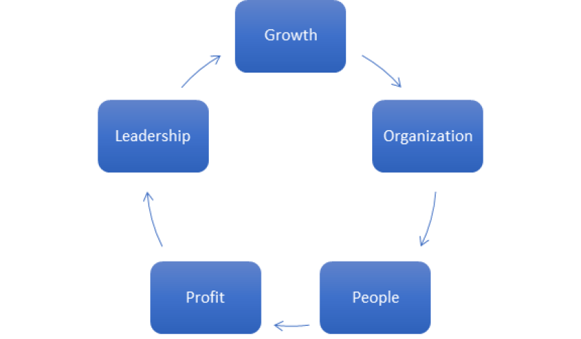 Strategy model for firms