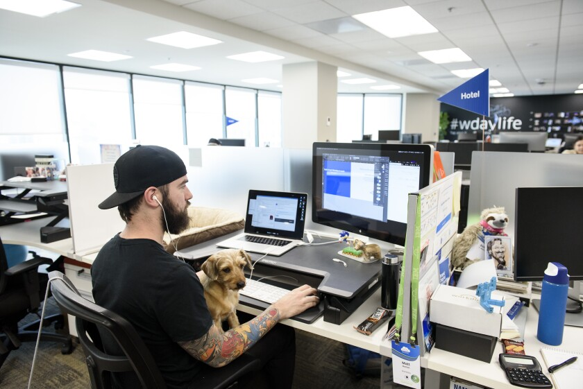 Pet Friendly.Bloomberg.6.26.19.jpg