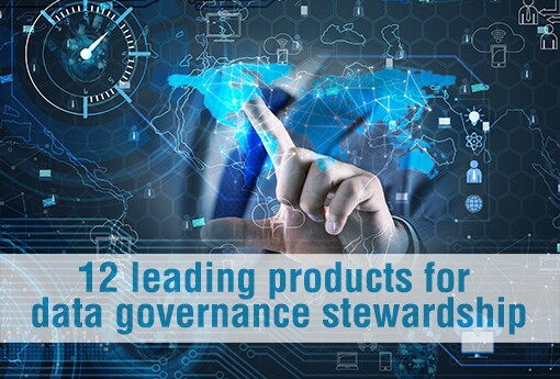 12-leading-products-for-data-governance-stewardship.jpg
