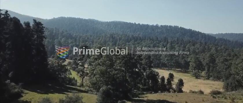 PrimeGlobal video