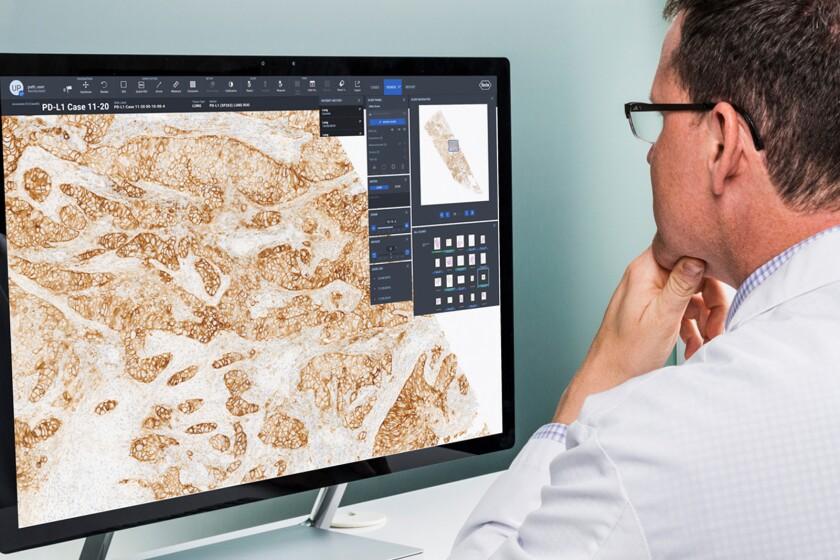 Roche-Pathology-CROP.jpg