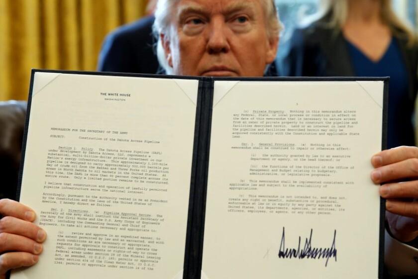 Trump-coloring-CROP.jpg
