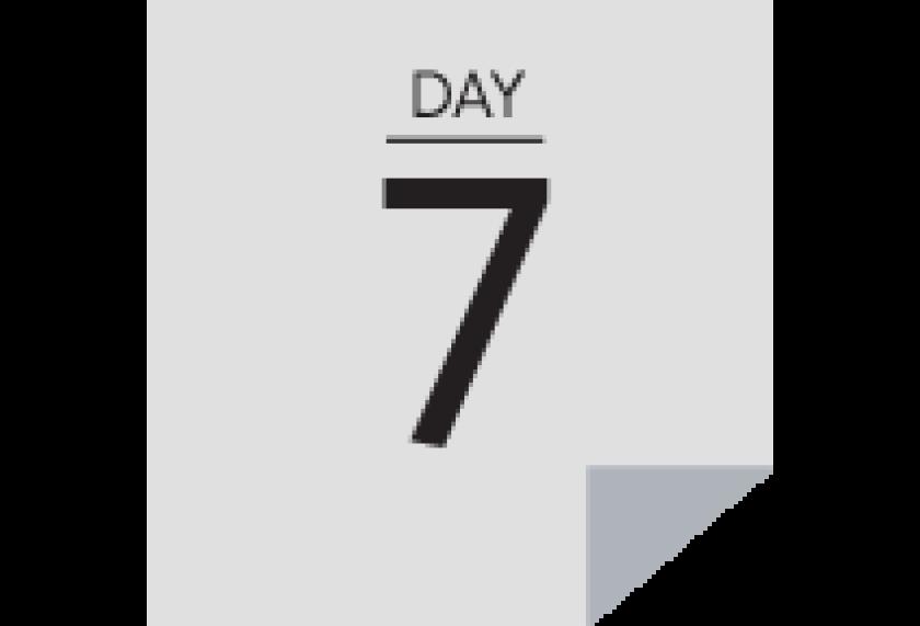 30Days_Day 7