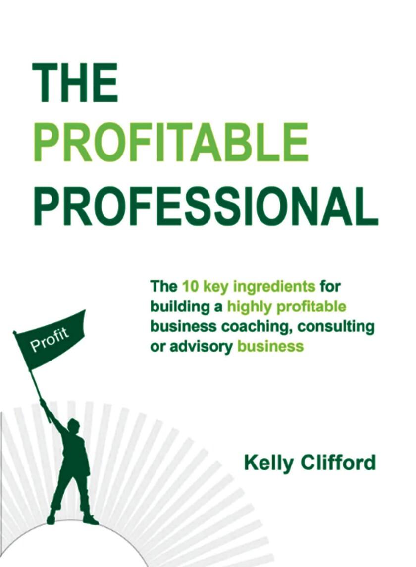 Book cover -- Profitable Professional