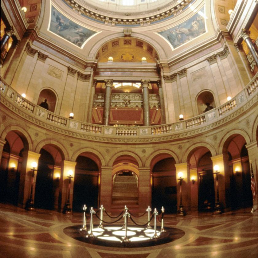Minnesota government.png