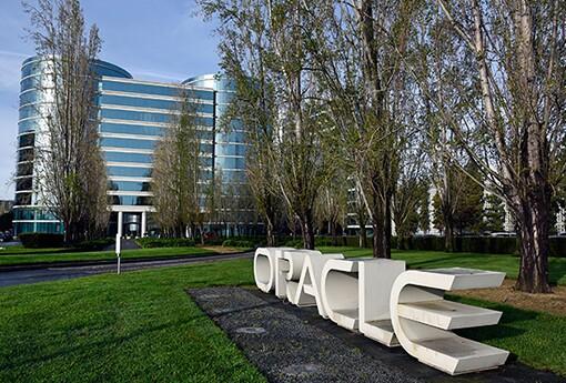 9. Oracle HDM p1b782g5bi19qr11eg1lo06r11otrq.jpg