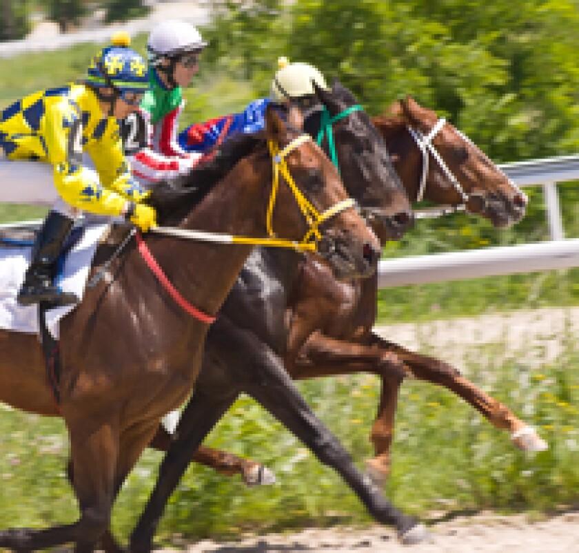 horserace.jpg