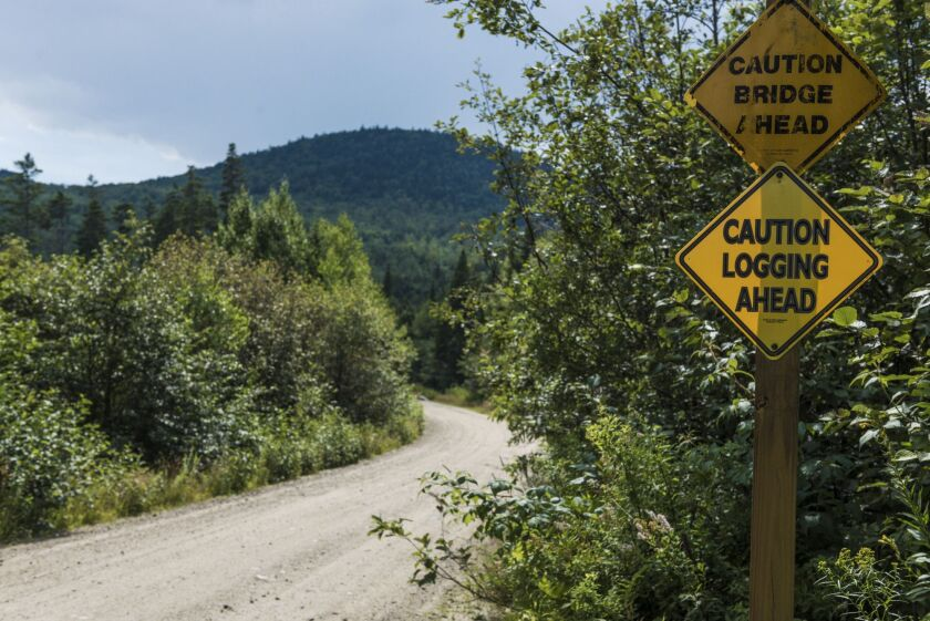"A ""Caution Logging Ahead"" sign is displayed near land managed by Wagner Forest Management Ltd., a company hired to handle Yale's land, in Millsfield, New Hampshire, U.S., on Thursday, Aug. 10, 2017. For at least two decades, Yale has led a land rush by the richest colleges. Funds snapped up forests as a way to hedge against inflation and the risks of stocks and bonds, and to take advantage of endowments' unusual ability to make investments that might not be easy to sell quickly. Photographer: Ian Thomas Jansen-Lonnquist/Bloomberg"