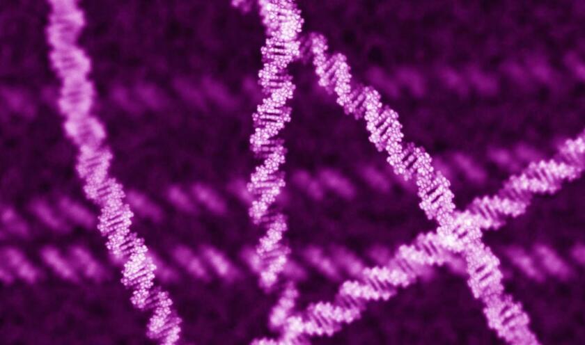 Genomic data-CROP.jpg