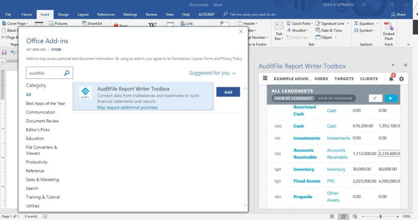 AuditFile Report Writer Toolbox for Word