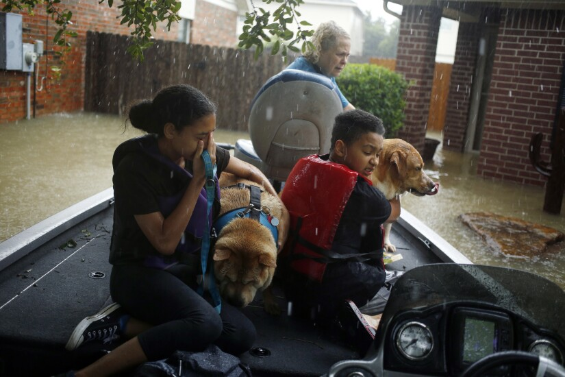 A boy and girl hug their grandmother's dogs after being rescued from rising floodwaters due to Hurricane Harvey in Spring, Texas.