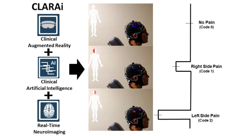 Brain-imaging2-CROP.png